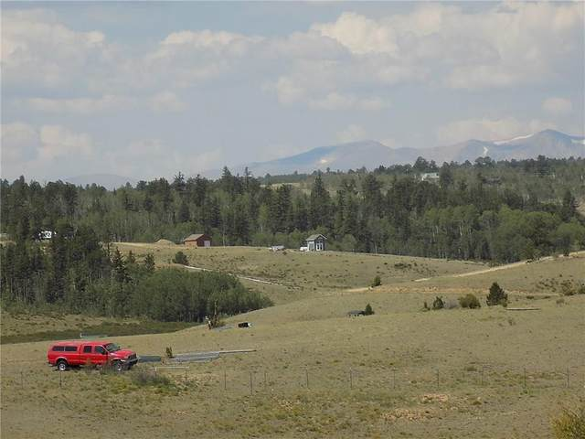 486 Buffalo Ridge Road, Como, CO 80432 (MLS #S1021134) :: eXp Realty LLC - Resort eXperts