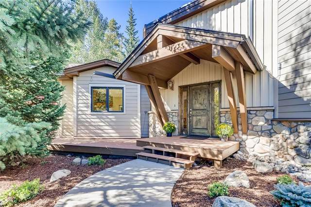 123 Boreas Pass Road, Breckenridge, CO 80424 (MLS #S1022248) :: Dwell Summit Real Estate