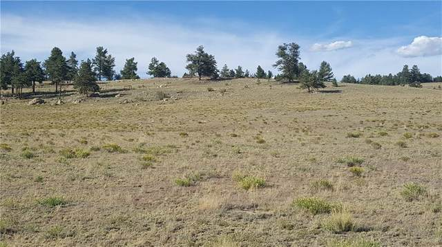 111 Superstition Trail, Hartsel, CO 80449 (MLS #S1022339) :: eXp Realty LLC - Resort eXperts
