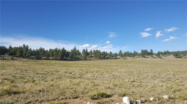 1583 Arapaho Road, Hartsel, CO 80449 (MLS #S1022341) :: eXp Realty LLC - Resort eXperts