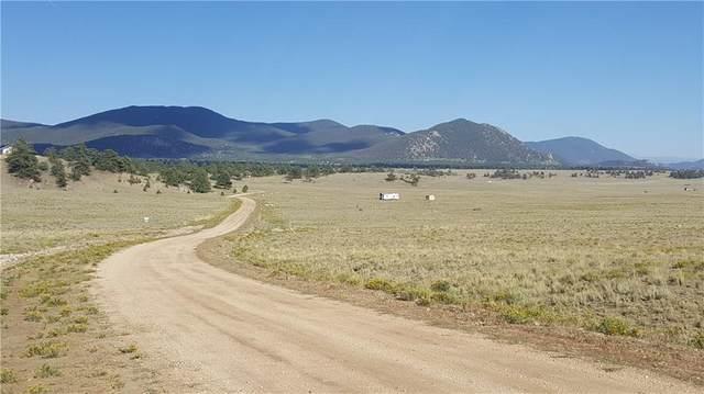 1827 Arapaho Road, Hartsel, CO 80449 (MLS #S1022354) :: Colorado Real Estate Summit County, LLC