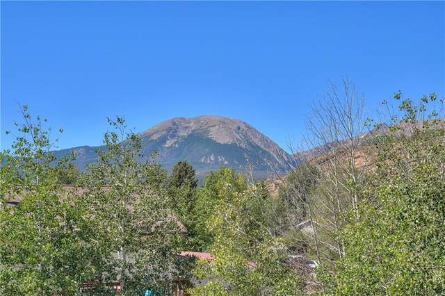 93 Canyon Trail, Dillon, CO 80435 (MLS #S1022402) :: eXp Realty LLC - Resort eXperts