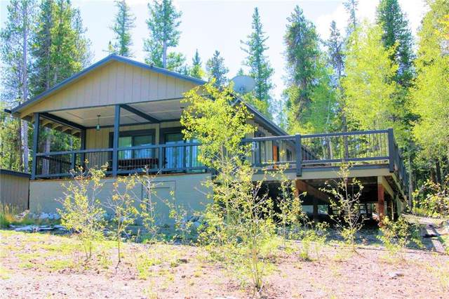 62 Suds Spot, Fairplay, CO 80440 (MLS #S1022485) :: eXp Realty LLC - Resort eXperts