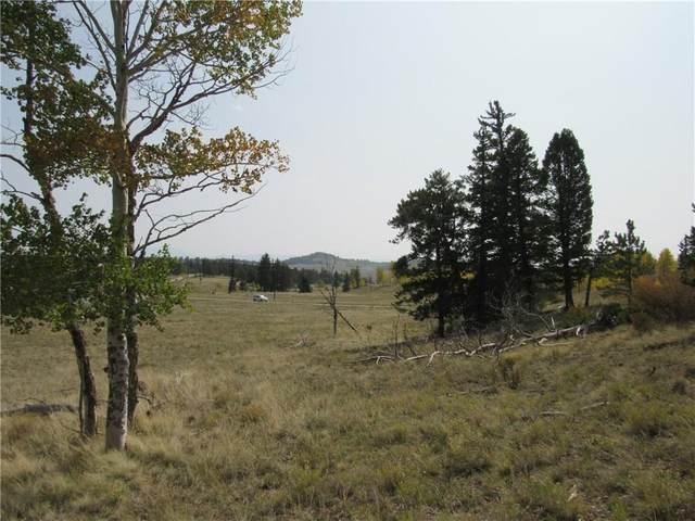 1250 Kaufman Road, Hartsel, CO 80449 (MLS #S1022549) :: Colorado Real Estate Summit County, LLC