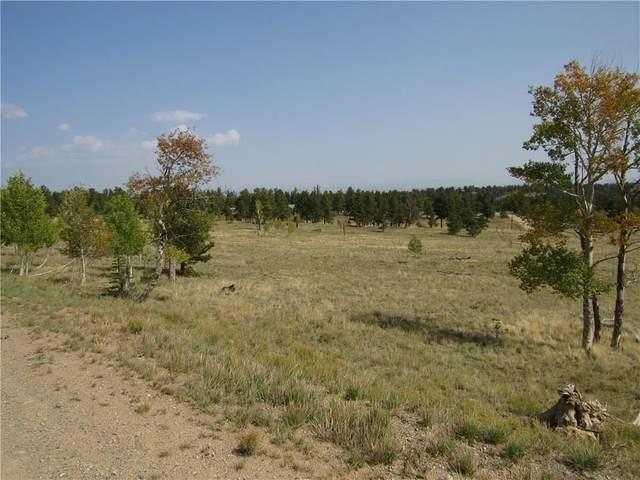 2226 Pitchfork Road, Hartsel, CO 80449 (MLS #S1022551) :: Colorado Real Estate Summit County, LLC