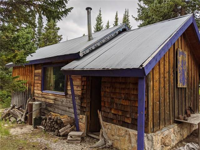 304 Silver Horseshoe Drive, Fairplay, CO 80440 (MLS #S1022595) :: Colorado Real Estate Summit County, LLC