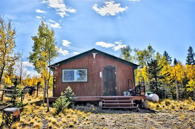 120 Creedmoor Lane, Como, CO 80432 (MLS #S1022654) :: eXp Realty LLC - Resort eXperts