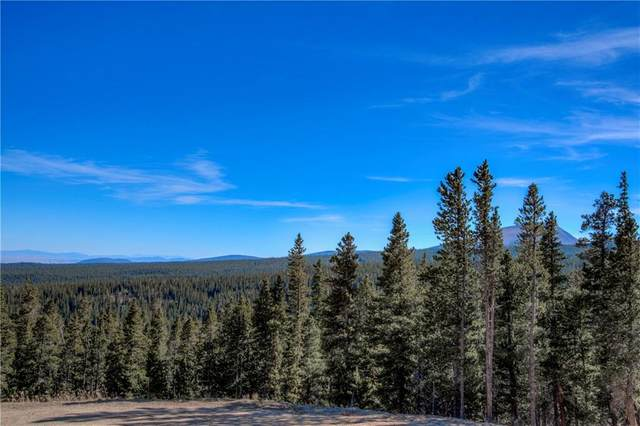 300 Gallagher Lane, Fairplay, CO 80440 (MLS #S1022756) :: Dwell Summit Real Estate