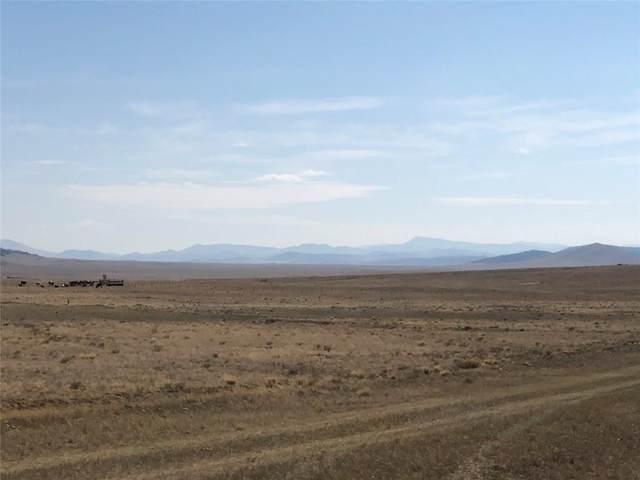 2608 S Meadow Drive, Como, CO 80432 (MLS #S1022812) :: Colorado Real Estate Summit County, LLC