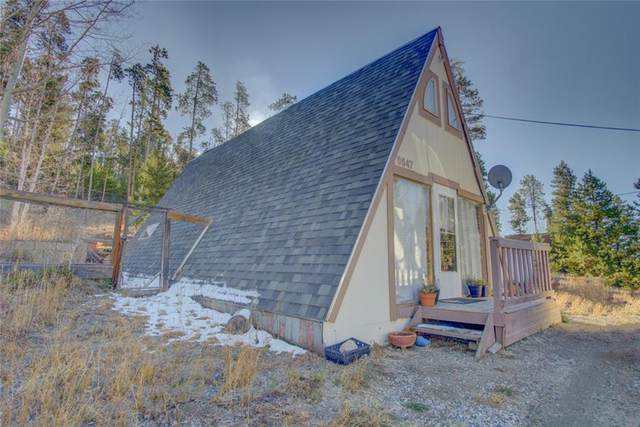 547 G Road, Silverthorne, CO 80498 (MLS #S1022822) :: Colorado Real Estate Summit County, LLC