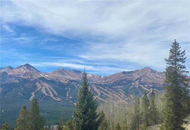 1254 Baldy Road #2, Breckenridge, CO 80424 (MLS #S1022857) :: Dwell Summit Real Estate