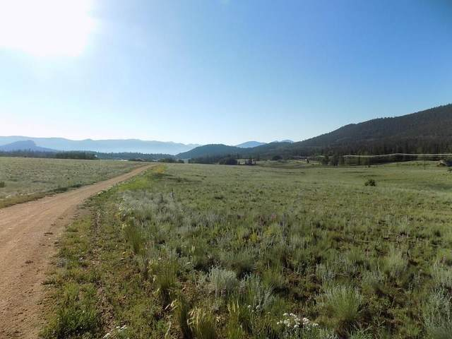 1907 Wampum Lane, Como, CO 80432 (MLS #S1022877) :: eXp Realty LLC - Resort eXperts
