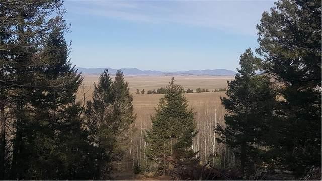 1144 Campfire Road, Hartsel, CO 80449 (MLS #S1022882) :: Colorado Real Estate Summit County, LLC