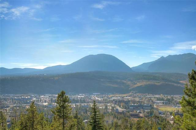 393 Cr 2020, Silverthorne, CO 80498 (MLS #S1022935) :: Dwell Summit Real Estate