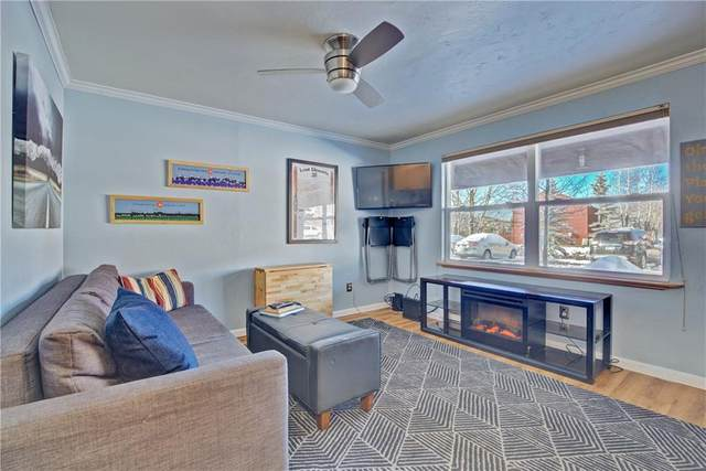 396 Cove Boulevard #14, Dillon, CO 80435 (MLS #S1022940) :: Colorado Real Estate Summit County, LLC