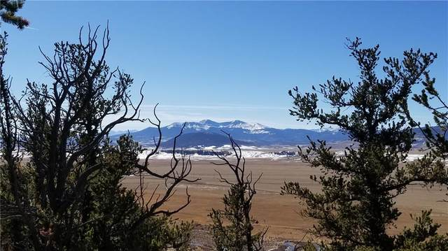 4437 Middle Fork Vista, Fairplay, CO 80443 (MLS #S1023001) :: Colorado Real Estate Summit County, LLC