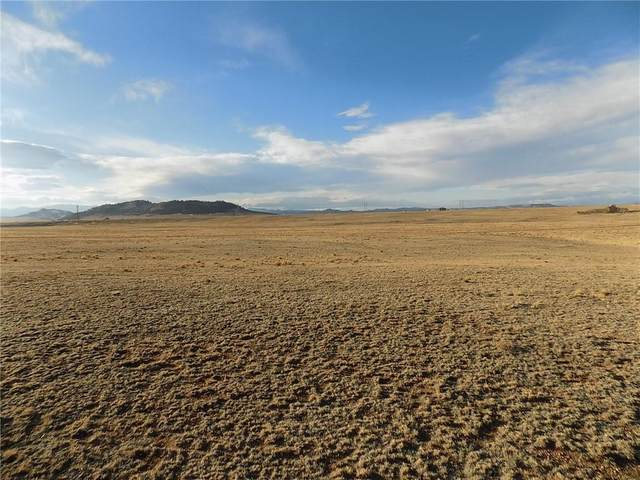 85 E Chase Road, Hartsel, CO 80449 (MLS #S1023060) :: eXp Realty LLC - Resort eXperts