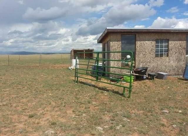 2730 Salt Ranch Trail, Hartsel, CO 80449 (MLS #S1023066) :: Colorado Real Estate Summit County, LLC