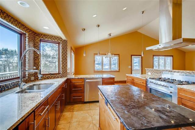 301 Fawn Court, Silverthorne, CO 80498 (MLS #S1023099) :: eXp Realty LLC - Resort eXperts
