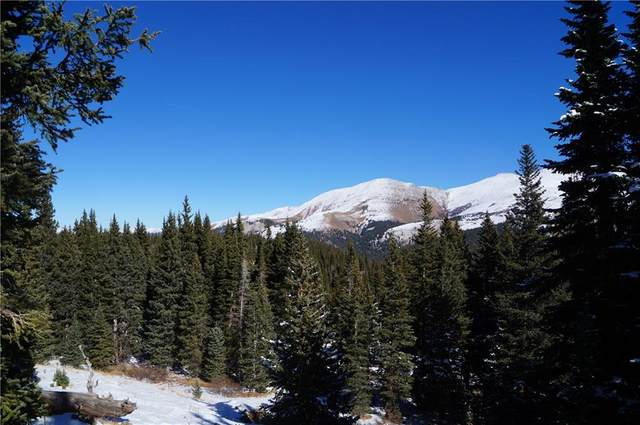 23 Camron Lane, Breckenridge, CO 80424 (MLS #S1023159) :: Colorado Real Estate Summit County, LLC