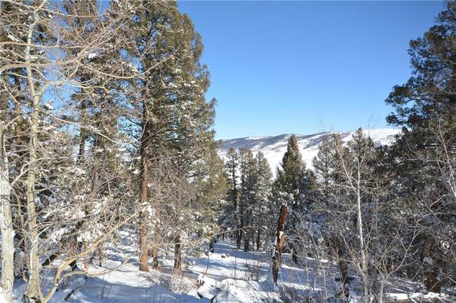 3806 Middle Fork, Fairplay, CO 80440 (MLS #S1023187) :: Colorado Real Estate Summit County, LLC