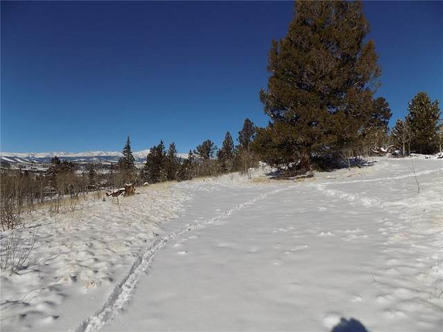 199 Bear Lane, Como, CO 80432 (MLS #S1023208) :: Colorado Real Estate Summit County, LLC