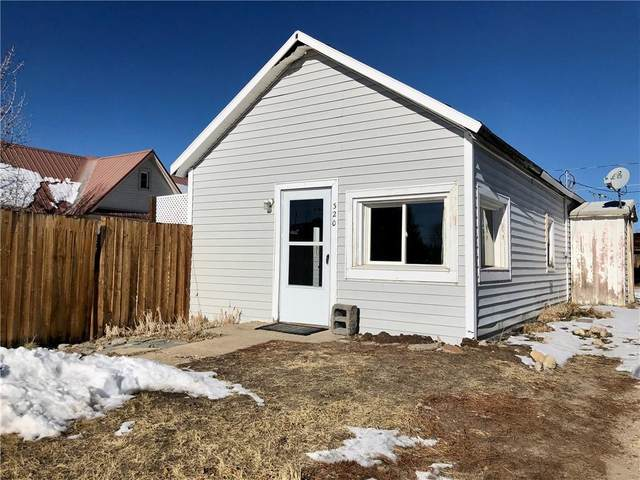 320 Chestnut Street, Leadville, CO 80461 (MLS #S1023279) :: Colorado Real Estate Summit County, LLC