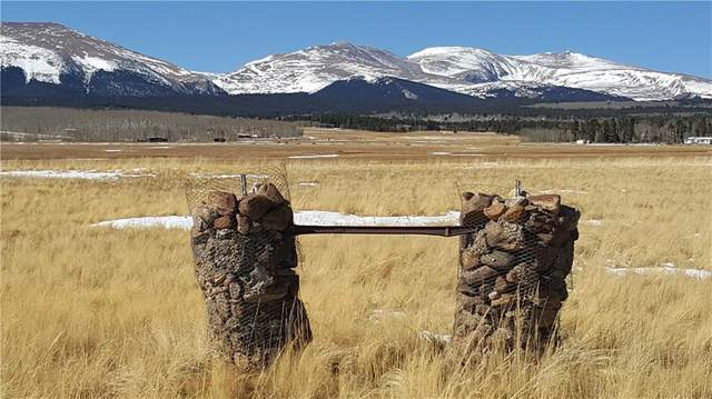 Lot 9 Co Road 18 Road, Fairplay, CO 80440 (MLS #S1023349) :: eXp Realty LLC - Resort eXperts