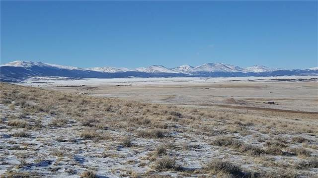 TBD Bare Trail, Fairplay, CO 80449 (MLS #S1023418) :: eXp Realty LLC - Resort eXperts