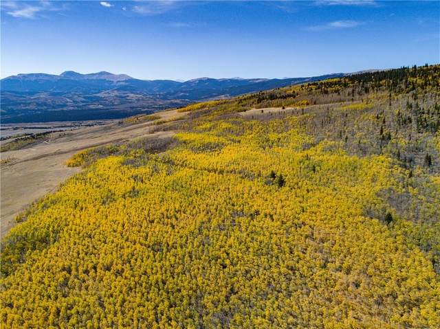 1115 Breakneck Pass Court, Fairplay, CO 80440 (MLS #S1023421) :: Colorado Real Estate Summit County, LLC