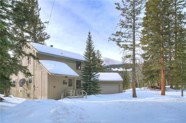 355 Nuthatch Drive, Alma, CO 80420 (MLS #S1023507) :: eXp Realty LLC - Resort eXperts