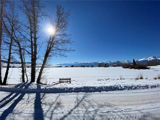 4 Mt Massive Trout Club, Leadville, CO 80461 (MLS #S1023531) :: Colorado Real Estate Summit County, LLC