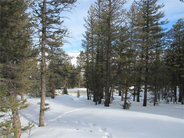 2359 Redhill Road, Fairplay, CO 80440 (MLS #S1023542) :: eXp Realty LLC - Resort eXperts