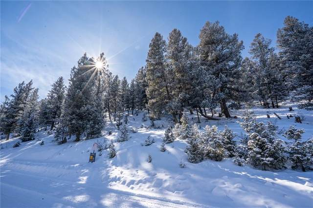 TBD REDHILL RD Middle Fork Vista, Fairplay, CO 80440 (MLS #S1023618) :: Colorado Real Estate Summit County, LLC