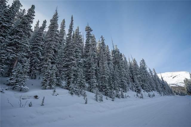 591 Kimmes Lane, Breckenridge, CO 80424 (MLS #S1023619) :: Colorado Real Estate Summit County, LLC