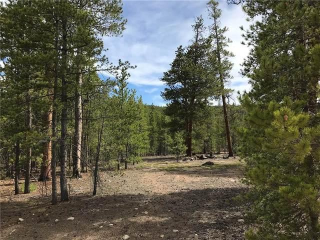 284 & 304 Peak View Drive, Twin Lakes, CO 81251 (MLS #S1023632) :: eXp Realty LLC - Resort eXperts
