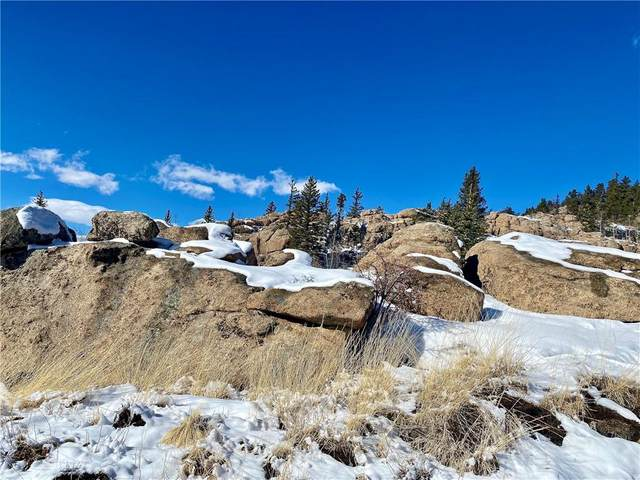 63 Longbow Court, Como, CO 80432 (MLS #S1023644) :: eXp Realty LLC - Resort eXperts