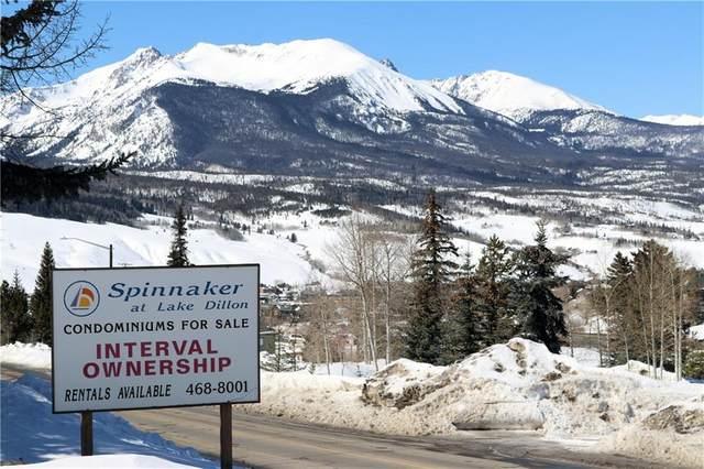 317 W 317Labonte Street #208, Dillon, CO 80435 (MLS #S1023775) :: Colorado Real Estate Summit County, LLC