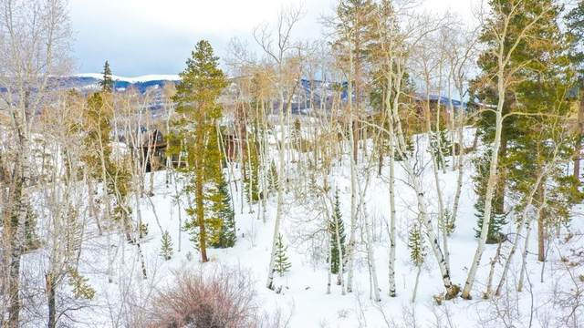 205 Game Trail Road, Silverthorne, CO 80498 (MLS #S1024012) :: Colorado Real Estate Summit County, LLC
