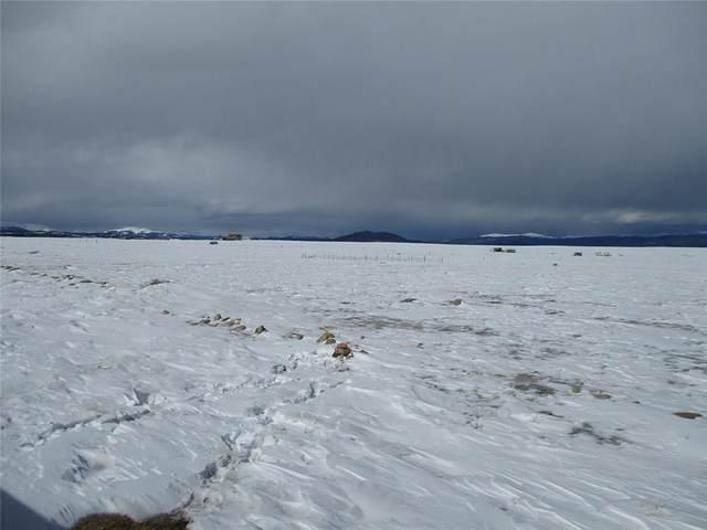 1529 Yellowstone Road, Hartsel, CO 80449 (MLS #S1024104) :: Colorado Real Estate Summit County, LLC