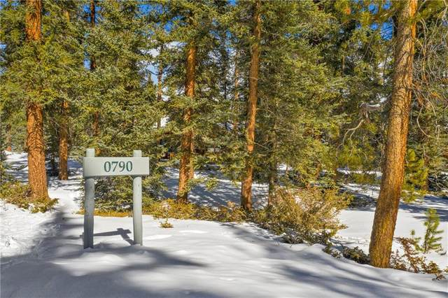 790 Penstemon Road, Keystone, CO 80435 (MLS #S1024125) :: Colorado Real Estate Summit County, LLC