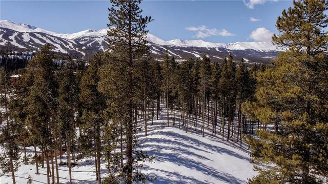 74 Southside Drive, Breckenridge, CO 80424 (MLS #S1024279) :: Colorado Real Estate Summit County, LLC