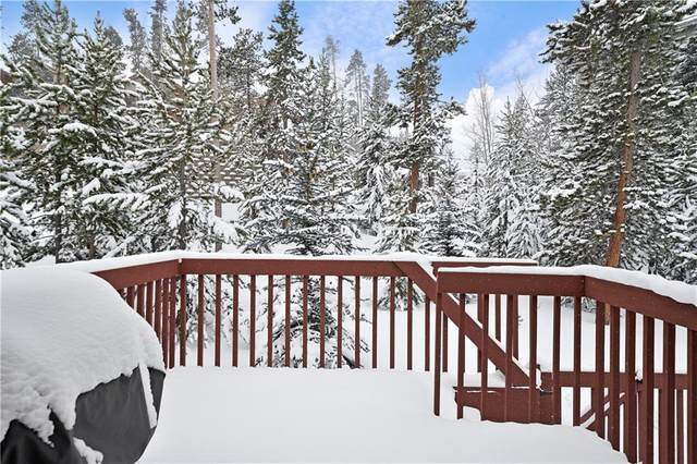 3901 Silverheels Drive #3901, Wildernest, CO 80498 (MLS #S1024339) :: Colorado Real Estate Summit County, LLC