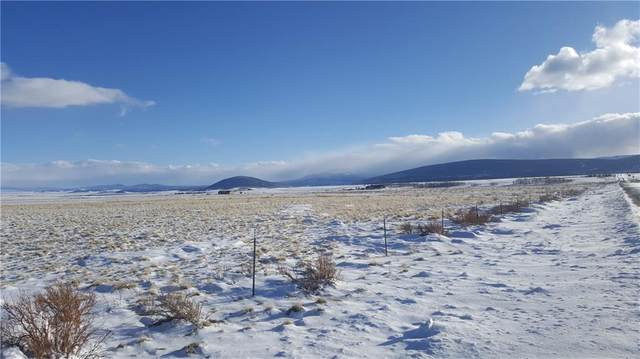 Lot 20 Co Road 18, Fairplay, CO 80440 (MLS #S1024357) :: Colorado Real Estate Summit County, LLC