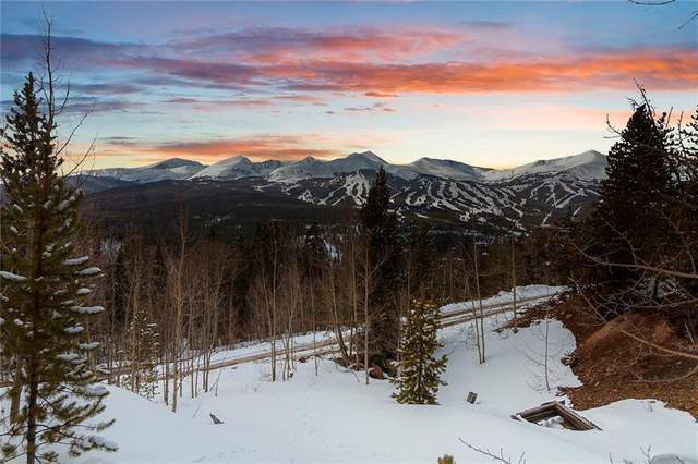 2211 Boreas Pass Road, Breckenridge, CO 80424 (MLS #S1024471) :: Dwell Summit Real Estate