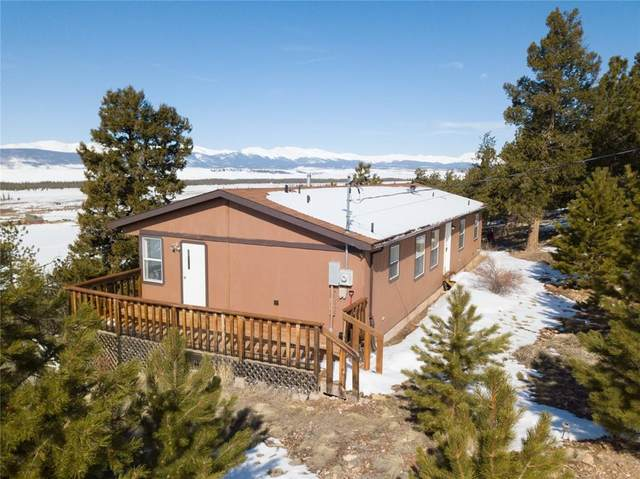 763 Bonell Drive, Fairplay, CO 80440 (MLS #S1024482) :: Dwell Summit Real Estate