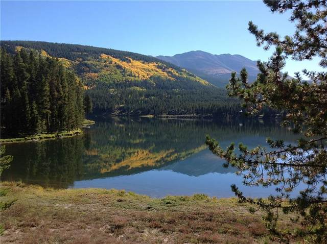 6915 State Highway 9, Blue River, CO 80424 (MLS #S1024514) :: eXp Realty LLC - Resort eXperts