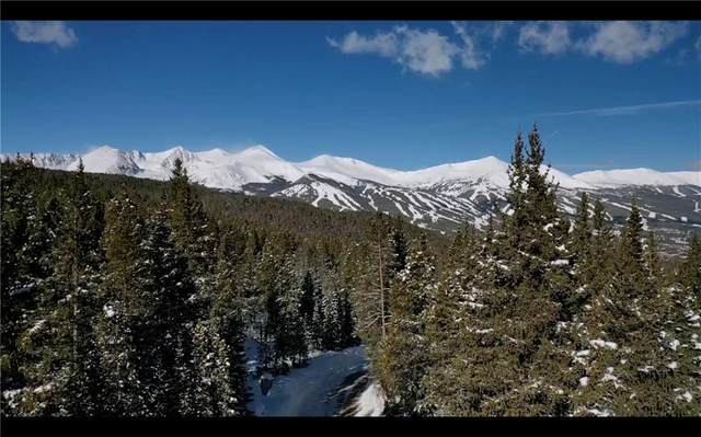 323 Cr 534, Breckenridge, CO 80424 (MLS #S1024523) :: Dwell Summit Real Estate