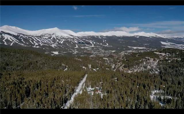 534 Cr 534, Breckenridge, CO 80424 (MLS #S1024524) :: Dwell Summit Real Estate