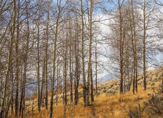 413 Mallard Road, Leadville, CO 80461 (MLS #S1024568) :: Dwell Summit Real Estate